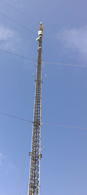 Arqiva Rumster Forest Mast